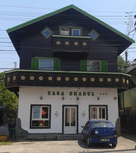 Pension Casa Bradul