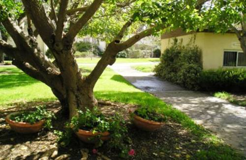 Kibbutz Mizra Country Lodging