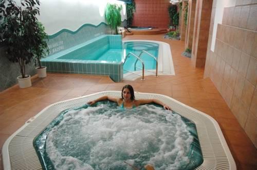 Wellness Hotel Synot