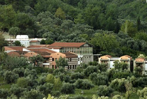 Natur-Med Hot Springs and Health Resort
