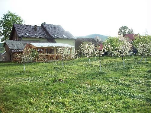 Bucovina Hills Guesthouse