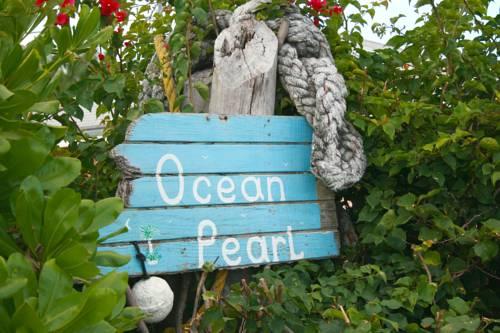 Ocean Pearl Bonefishing Resort