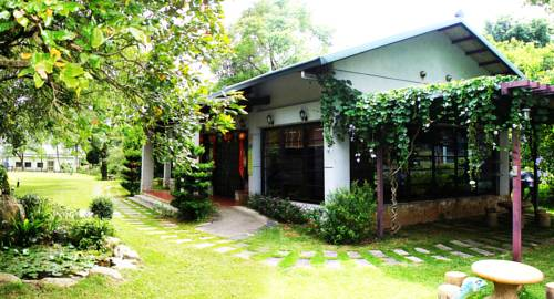 Liping Organic Tea Farm Bed & Breakfast