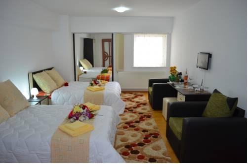 Central House Apartments Bacau