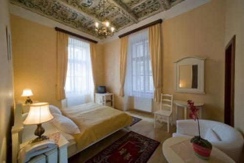 Hotel Cerny Slon