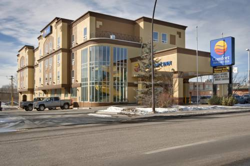 Comfort Inn and Suites University