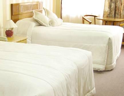 Apart Hotel Regina