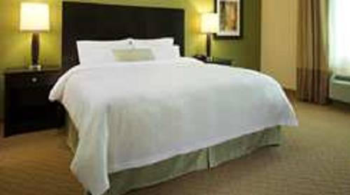 Hampton Inn and Suites Houston Central
