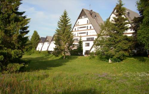 Flingermann Apartment Schönwald