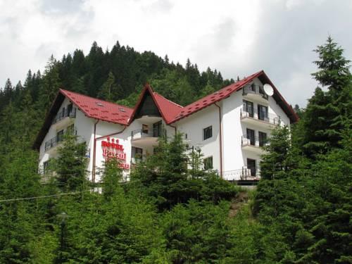 Piscul Negru Hotel