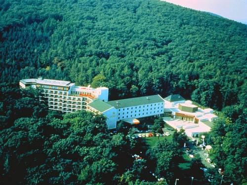 Hotel Löver Sopron