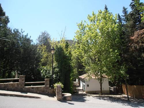 Alojamientos Rurales Sierra de Grazalema