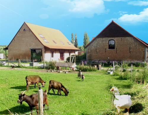 De Plukboerderij van Schelle