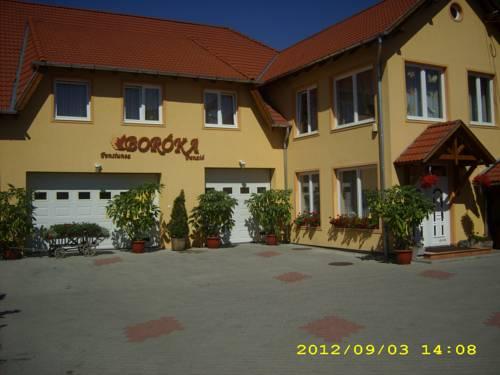 Pensiunea Boróka