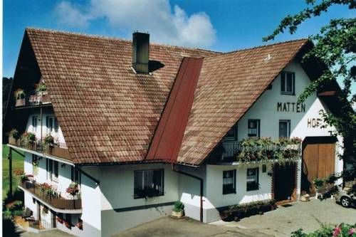 Apartment Mattenhof 1
