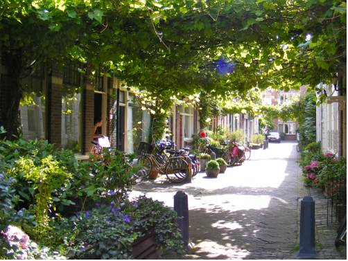 Where Els Haarlem