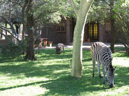 Phumula Kruger Lodge and Safaris