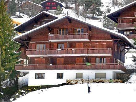 Apartment Haus Grindelwald
