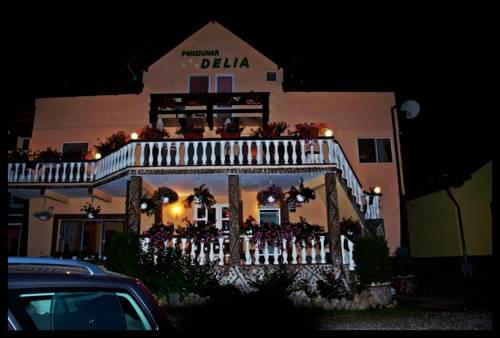 Pensiunea Delia