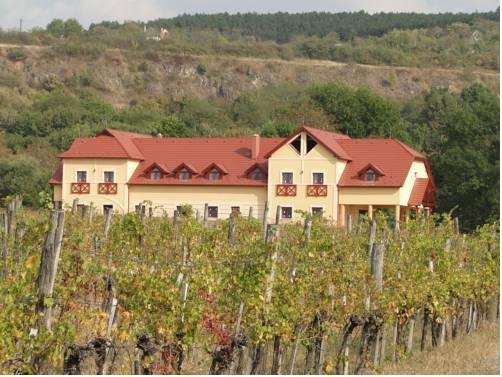 Borhotel Sziluett Farkasmály